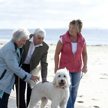 homecare - helping you remain independent