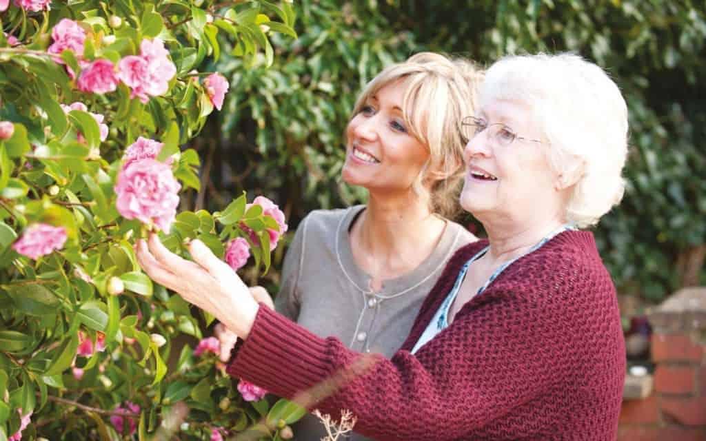 domiciliary care provides peace of mind
