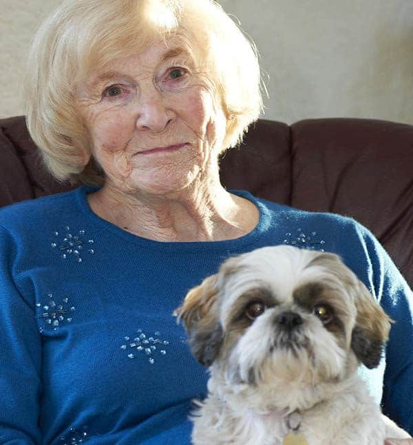 domiciliary carer helps with pets