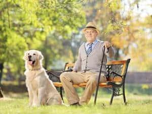 Bespoke Elderly Care