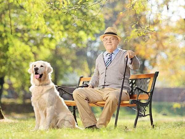 Bespoke Elderly Carers for individual needs